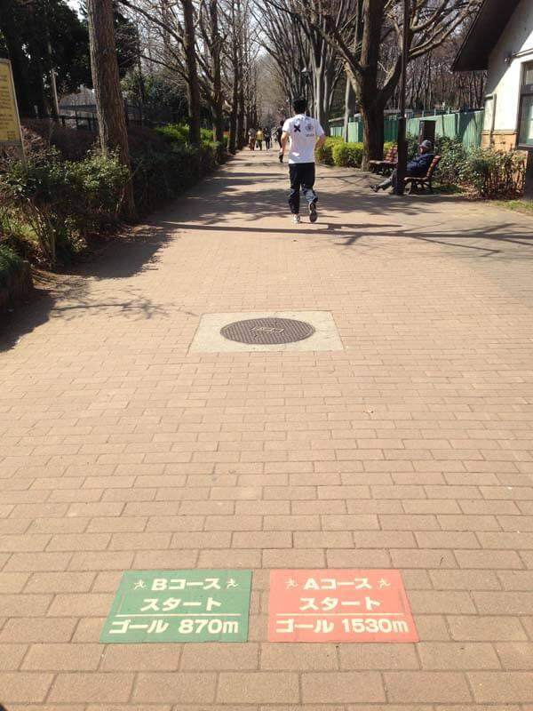 出典:http://www.sportsone.jp/running/course/johokucentralpark.html