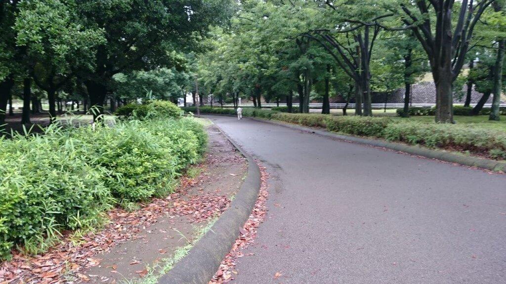 出典:http://blog.livedoor.jp/livingcomfortably_-yokohamarunner/archives/35351615.html