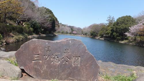 出典:http://www.kanagawa-navi.net/14100016_04.html