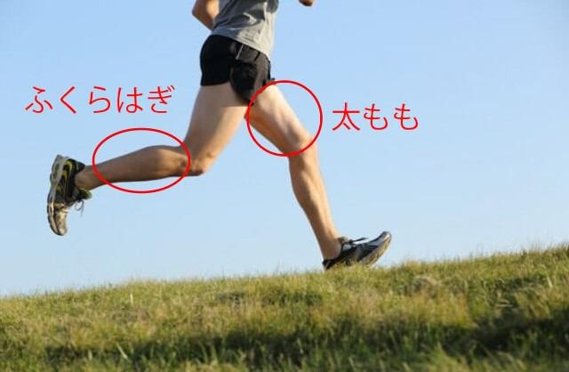 筋肉痛が発生する部位