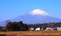 静岡市内のおすすめのランニングコース6選
