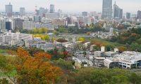 仙台市内のおすすめのランニングコース6選