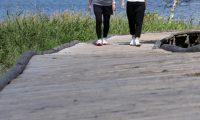 初心者にはウォーキングとランニングを交互にする運動が効果的な5つの理由