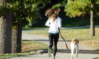 愛犬と一緒に走ろう!ランニング用ハンズフリーリードのおすすめ3選