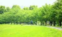 30km走で得られる5つの効果と正しい取り組み方