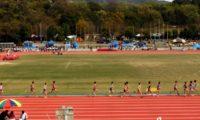 陸上5000mの中学・高校男女別の平均タイム