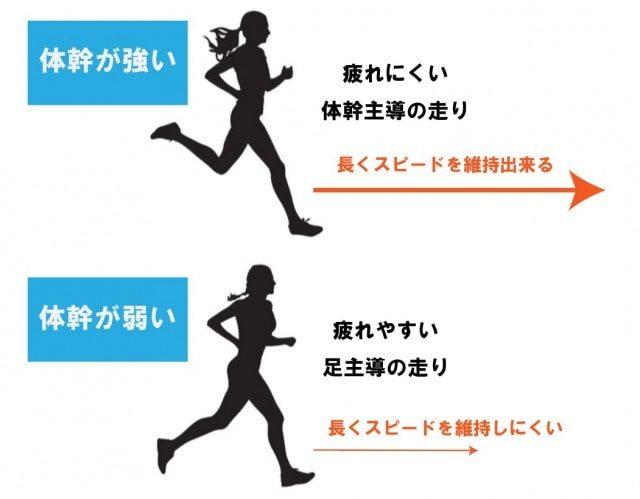 体幹の効果②