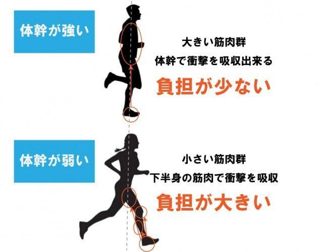体幹の効果①